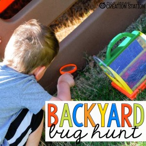 Backyard Bug Hunt