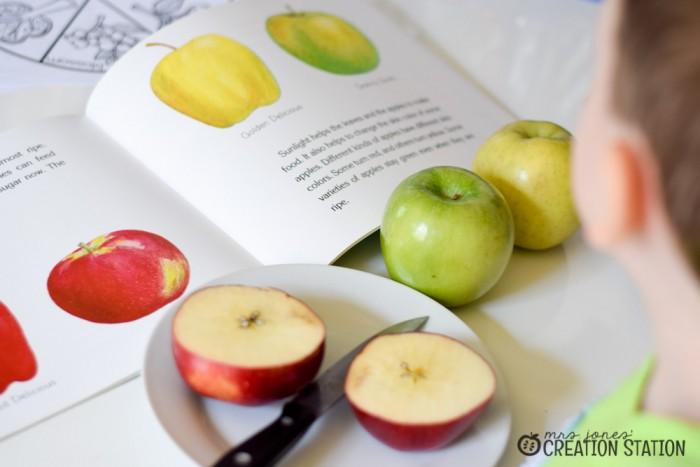 Apple Science-6