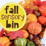 Fall Sensory Bin for Little Learners