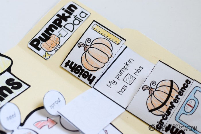 Pumpkin Science Lapbook - MJCS-11