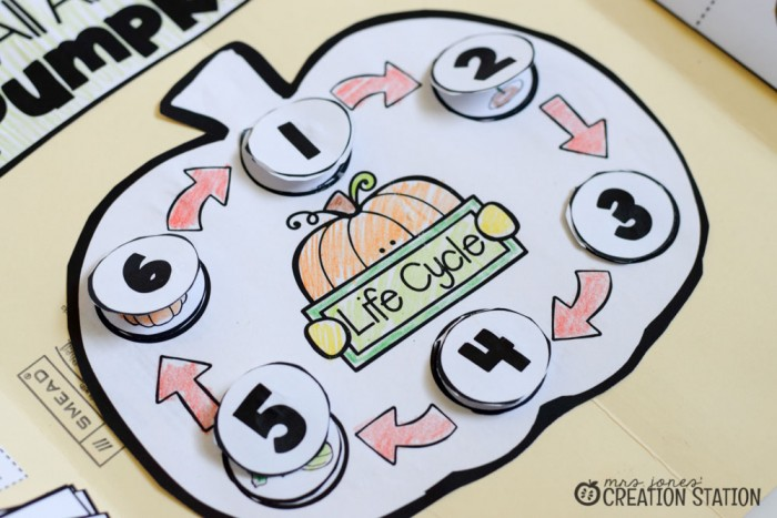 Pumpkin Science Lapbook - MJCS-3