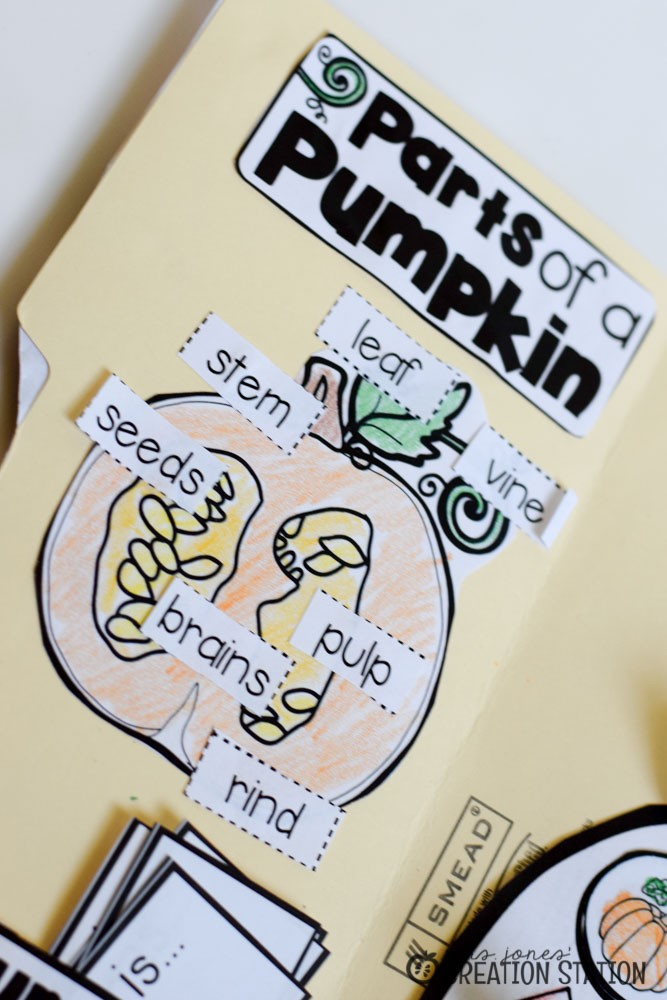 Pumpkin Science Lapbook - MJCS-6