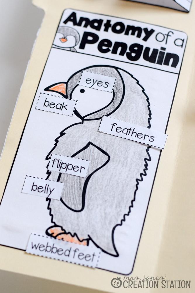 Penguin Science Lapbook - Mrs. Jones' Creation Station