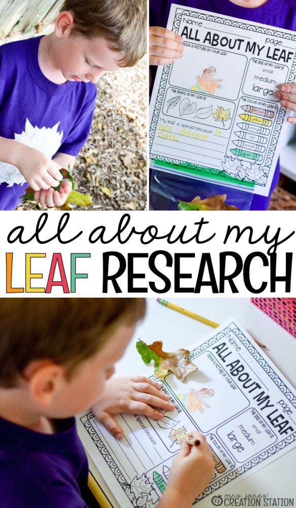 All About My Leaf Science Activity