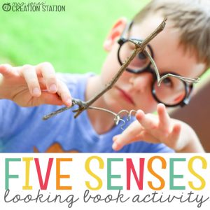 Five Senses Science Activty