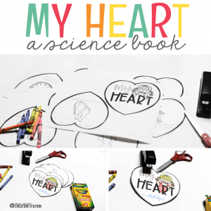 What Your Learners Should Know About Their Heart