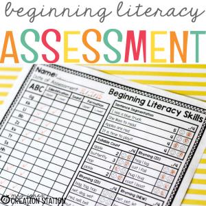 FREE Beginning Literacy Assessment
