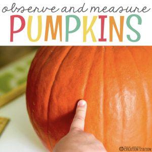 Pumpkin Observation Made Easy
